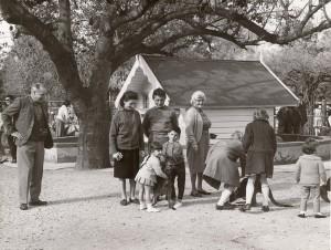 AdelaideZooChildrensZoo1960-70