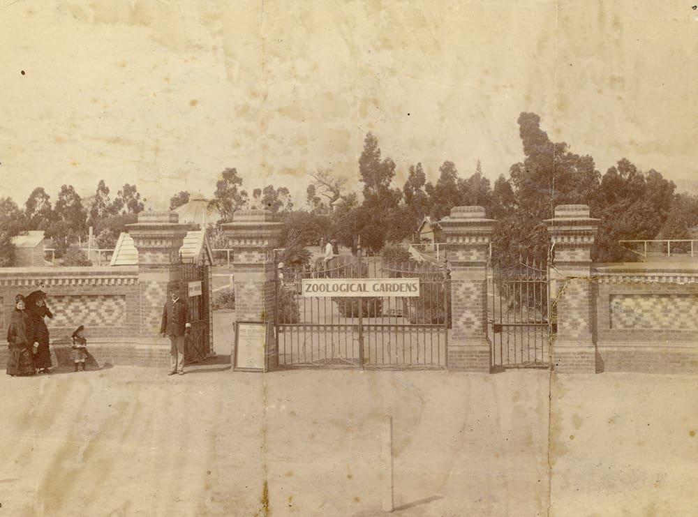 History zoos sa for Garden design history