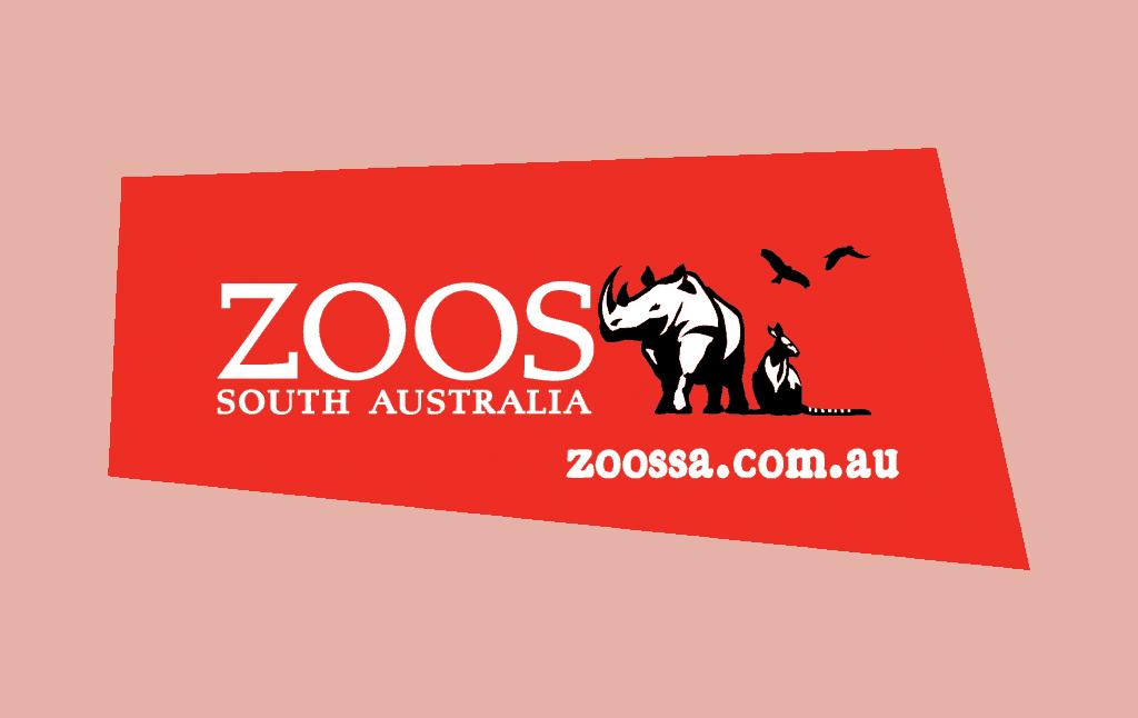 zsalogos-with-device-horizontal