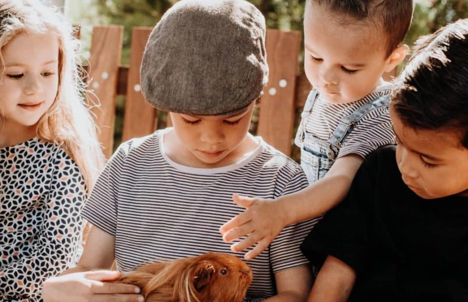 Variety-Childrens-Zoo-opening