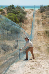 Bettong fence Zoos South Australia Yorke