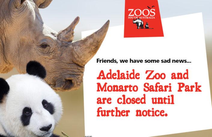 Closure at Zoos SA, Adelaide Zoo, Monarto Safari Park, COVID 19,