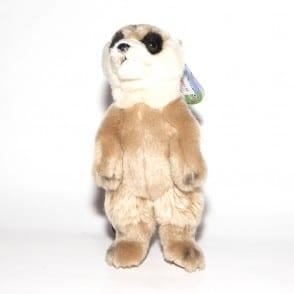 meerkat 002