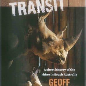 Game in Transit