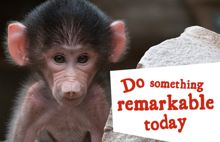 Do something remarkable today